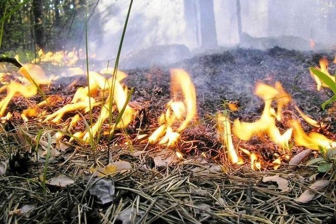 «Жгли мусор — сожгли ребенка…»: 21-летняя мать не уберегла свою дочь, подробности трагедии