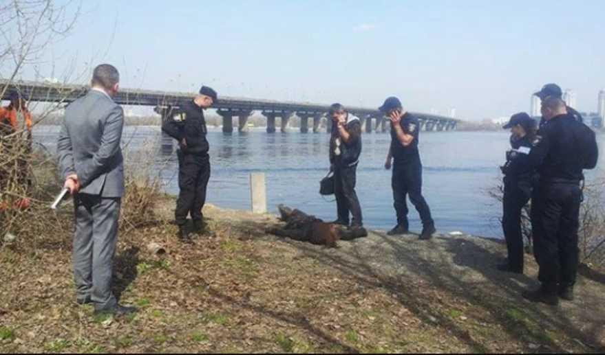 Ужасная находка: Спасатели нашли в реке изуродованное тело молодой девушки (фото 18+)
