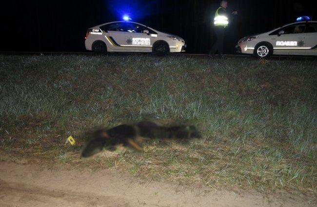 Ужасное ДТП всколыхнуло город: Под колесами авто погиб неизвестный юноша