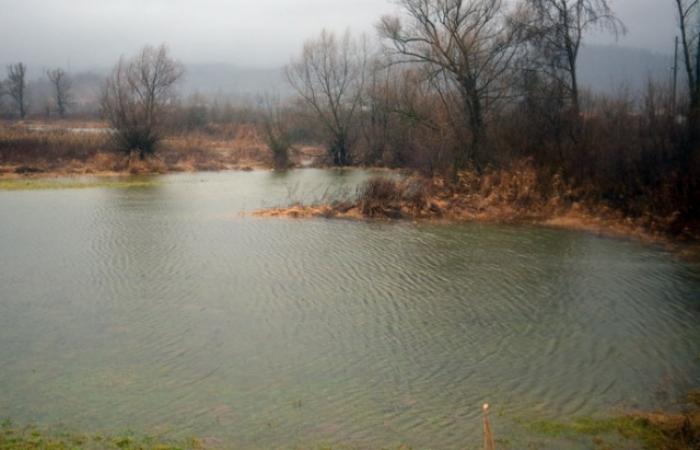 Без признаков жизни: На Львовщине в реке обнаружили тело мужчины