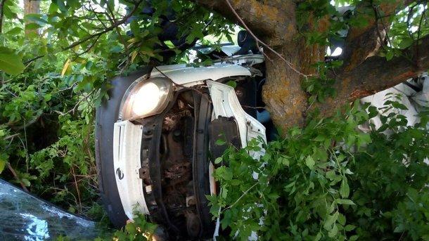 От мощного удара авто застряло в дереве: Пять человек погибли, еще трое получили травмы
