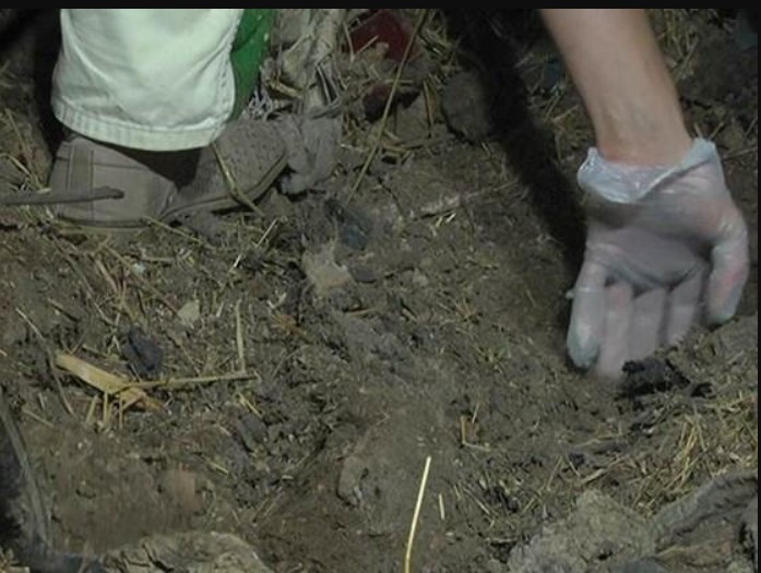 «Закопал в одной из многих лесополос»: Украинский депутат 15 лет назад убил свою жену