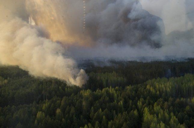 Уровень радиации зашкаливал: Жители Чернобыльской зоны рассказали правду о недавнем пожаре