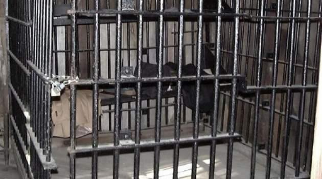 «Была закрыта в клетке с переполненным детским горшком»: Родители держали в рабстве 18-летнюю дочь