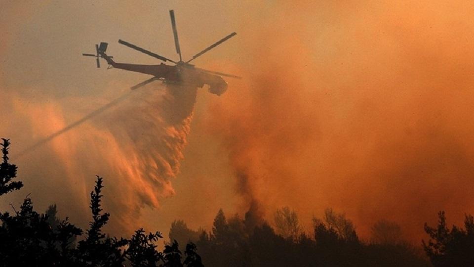 «Закрывать окна и осуществлять…»: В Чернобыле вспыхнул страшный пожар. Что советуют украинцам