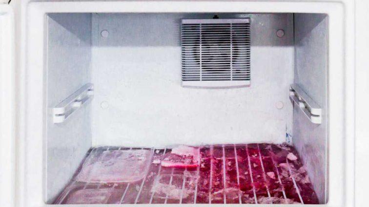 Убил и упаковал в морозилку: Жену самоубийцы нашли мертвой дома