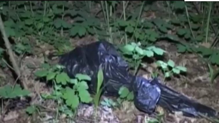 «Задушили проволокой и расчленили»: Пара любовников жестоко убила 24-летнюю девушку