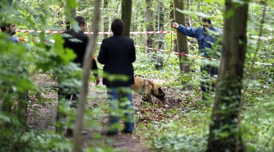 Заманили в лес, чтобы ограбить: 15-летняя девочка с двумя товарищами жестоко зарезала невинниго человека