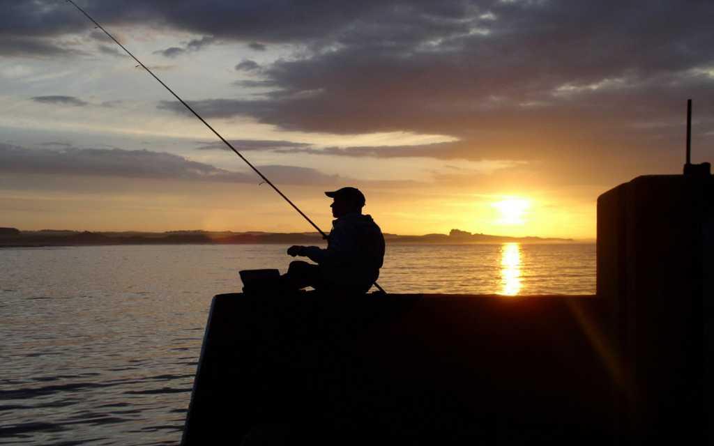«47-килограммовое усатое чудовище»: Улов ровенского рыбака ошеломил всю страну
