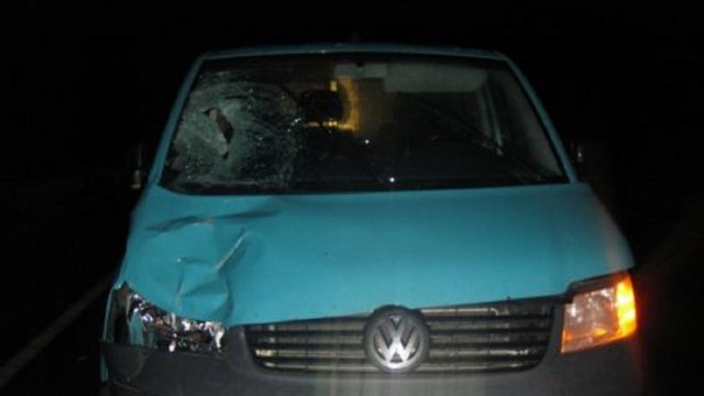 Перебегал дорогу: На Львовщине водитель сбил четырехлетнего ребенка