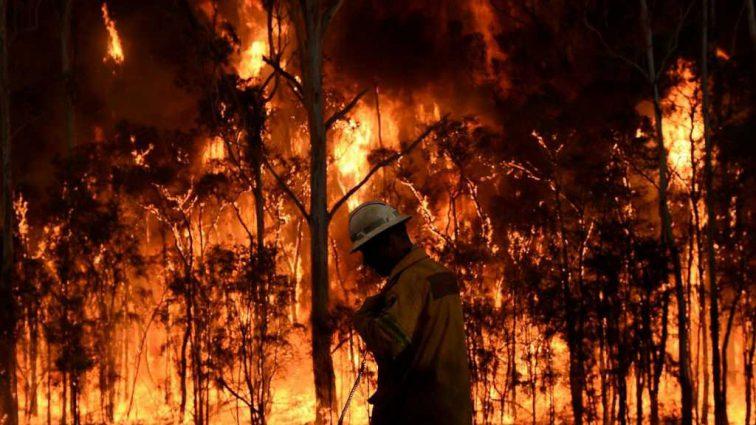Сотни уничтоженных домов и две человеческих жизни: лесные пожары набирают силу