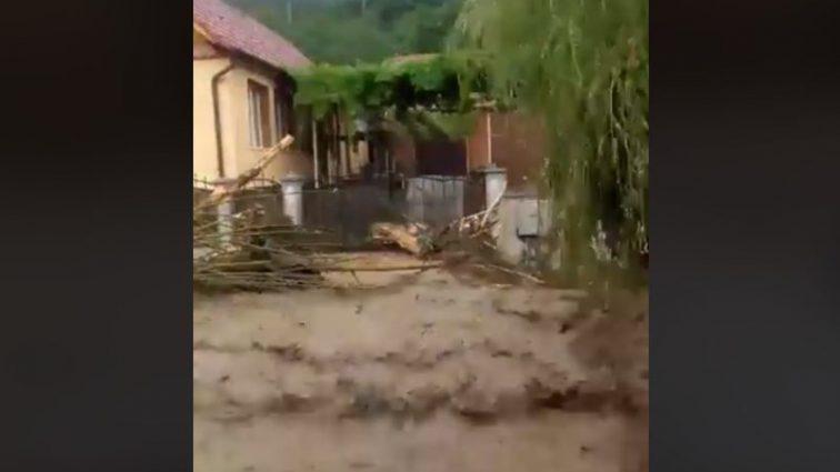«Вода с грязью сносила на своем пути все» В Сети показали последствия непогоды в Карпатах