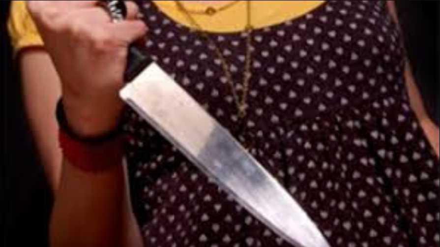 В Киевской области пьяная невестка с ножом напала на свекра