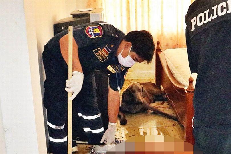 Мужчина умер и остался в жертву голодному собаке. Полиция застала шокирующую картину