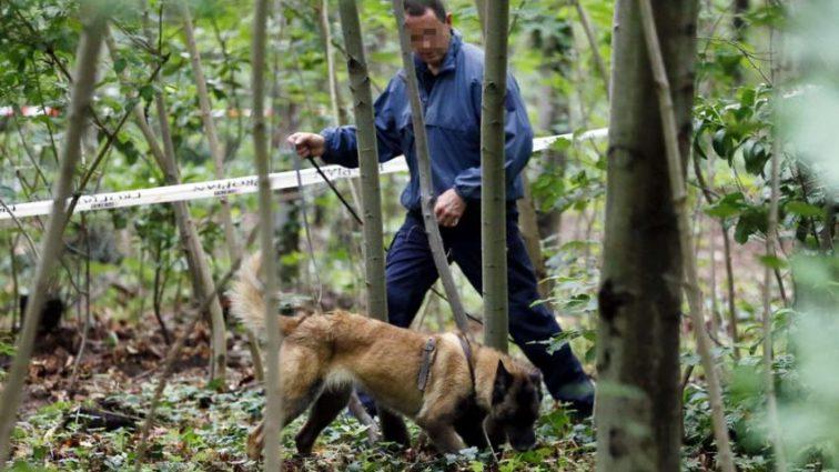 Спрятали под ветвями: В лесополосе Киева нашли тело женщины
