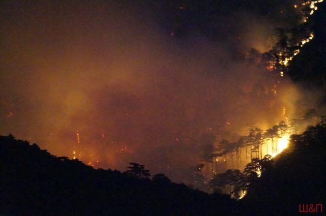 «Рев машин всю ночь и вертолеты»: Показали кадры страшного пожара в Крыму
