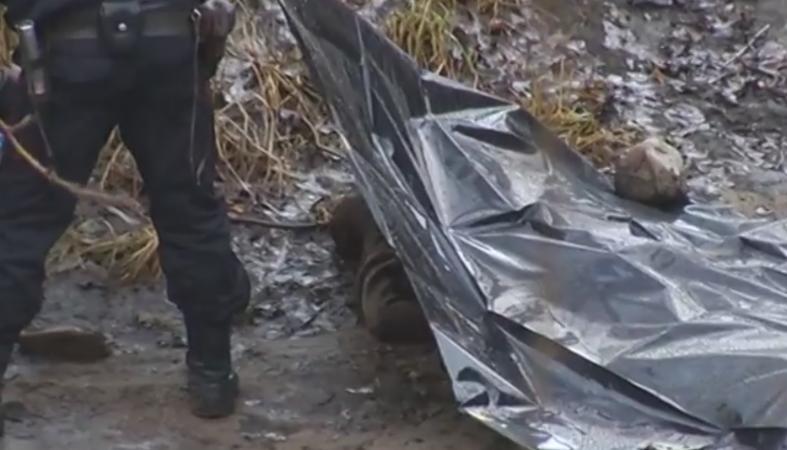 «Приехал погостить к родным»: Во Львовской области трагически погиб мужчина