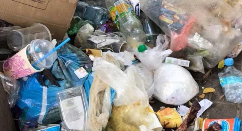 «В куче мусора лежат части скелетов»: Сеть остро обсуждает отвратительное зрелище