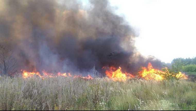 «Оказалась в ловушке»: Во время обжига сухостоя погибла женщина