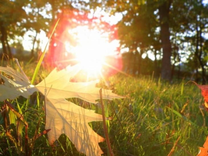 Будет по-летнему тепло: Синоптики рассказали, каких сюрпризов от погоды следует ожидать 14 сентября
