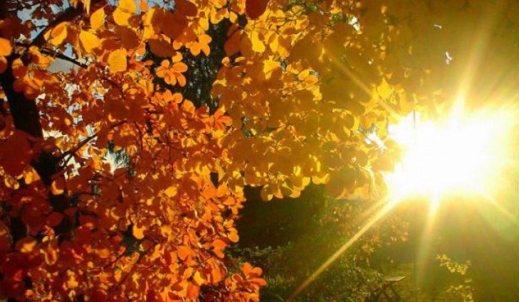 Тепло заканчивается: Синоптики рассказали, каких сюрпризов от погоды следует ожидать 21 сентября