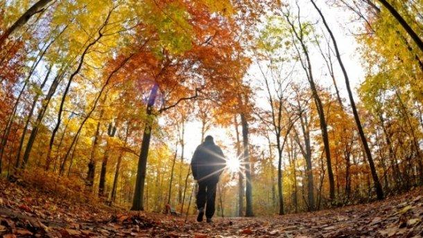 Станет теплее: Синоптики рассказали, какой погоды следует ожидать 17 сентября