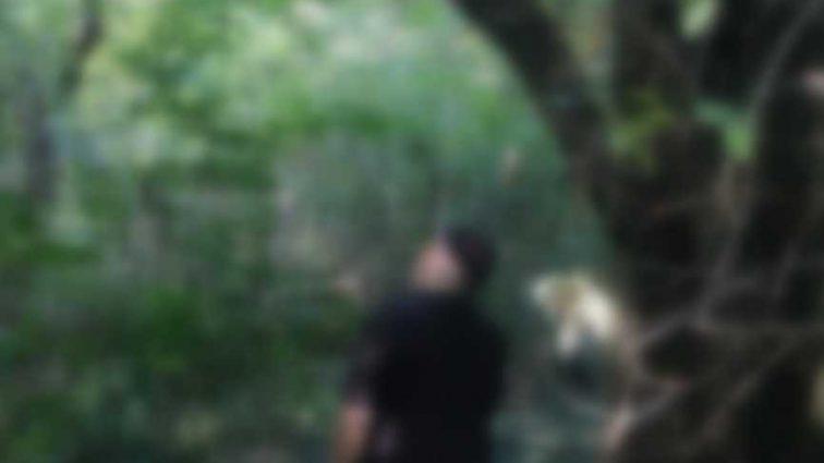 В парке висел на одной из ветвей: нашли тело бывшего главы отдела по борьбе с экономическими преступлениями