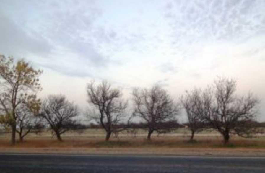 «Ожоги и остановка дыхания»: Рассказали чем грозит крымчанам химическая катастрофа