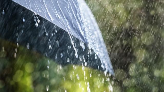 Дожди и похолодание: Синоптик дала прогноз погоды на 8 сентября