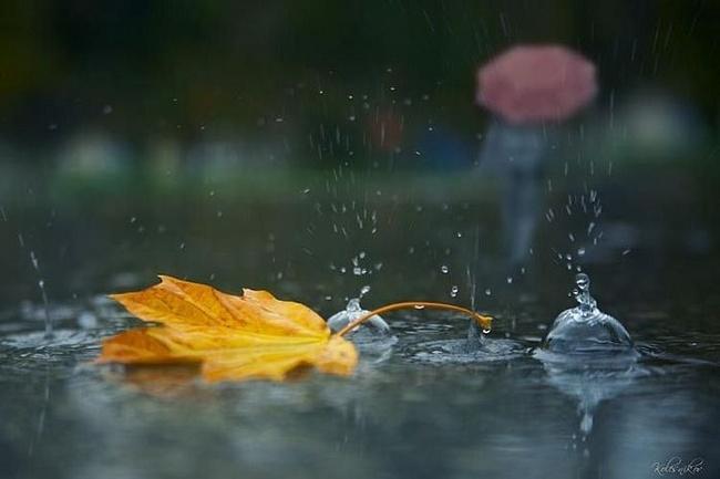 Украину накроет дождями: Синоптики рассказали, какие сюрпризы от погоды следует ожидать 3 октября