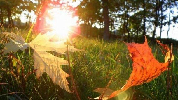 Порадует всех: Синоптики рассказали, каких сюрпризов от погоды ожидать 1 ноября