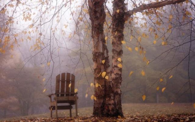 Сует холодная осень: Синоптики дали прогноз на 19 октября