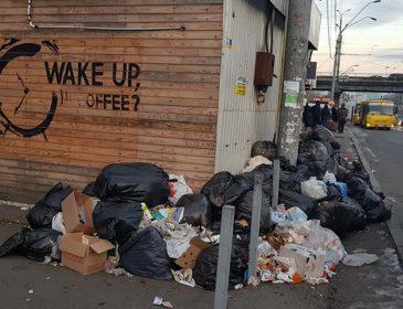 Киев утопает в мусоре: в сети показали печальные фото столицы