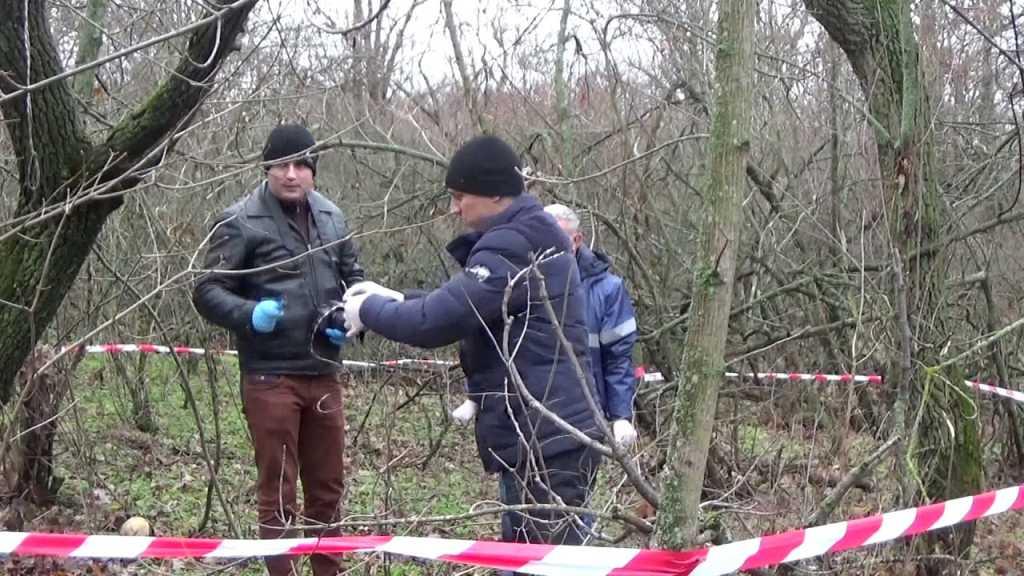 Месяц в петле на коленях: В Николаеве в лесополосе нашли тело мужчины