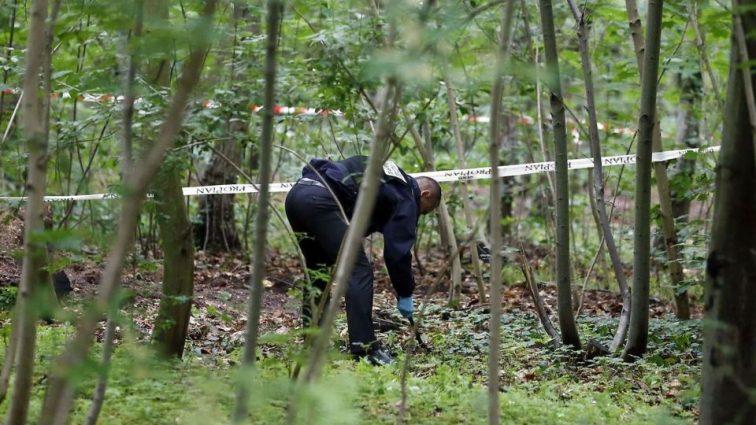 Его искали меньше месяца: пропавшего без вести мужчину нашли в лесу и без руки