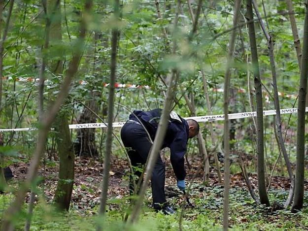 Тело было спрятано в кустах: Накануне Дня рождения нашли убитой дочь известного миллионера