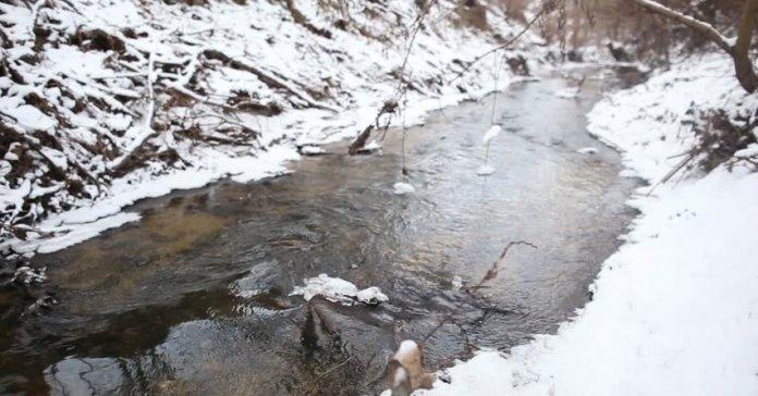На Львовщине в реке нашли тело женщины: первые подробности трагедии