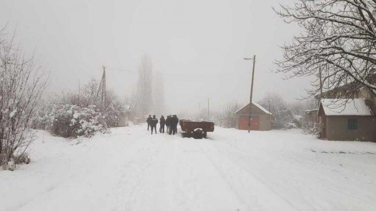 На Закарпатье 24-летний парень жестоко убил женщину: жуткие подробности