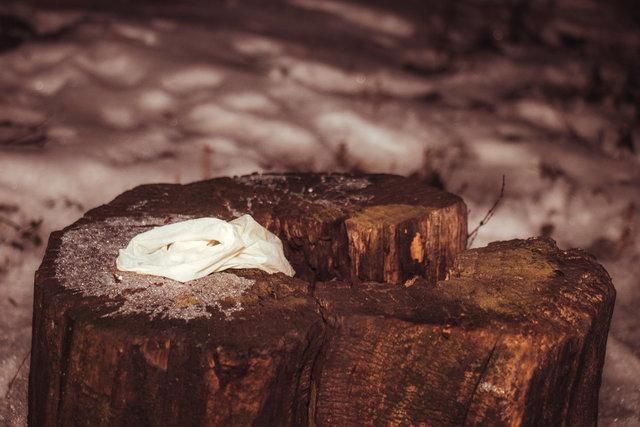 Тело лежало под деревьями: В Киеве нашли труп мужчины