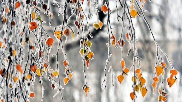 Всю Украину накроет непогода: Прогноз погоды на 2 декабря