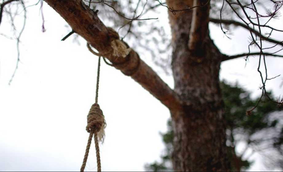 «Сегодня та самая ночь, которой все закончится»: 15-летнего студента музыкального колледжа нашли повешенным на дереве