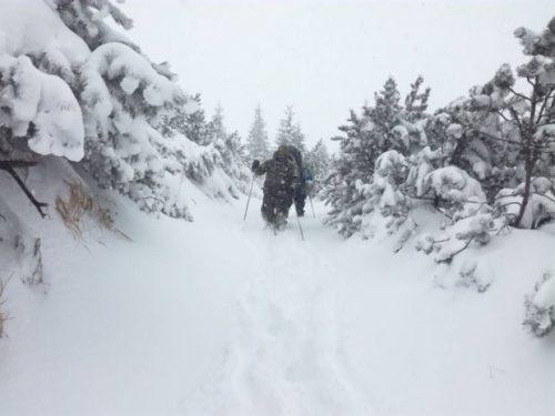 В Карпатах туристов постигла беда на Рождество: трех человек до сих пор не могут найти