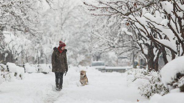 На Рождество ударят морозы и заметет снегом: прогноз погоды на 7 января