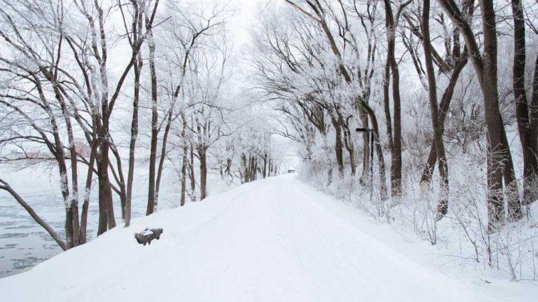 Таких морозов не было давно: Прогноз погоды на 25 января
