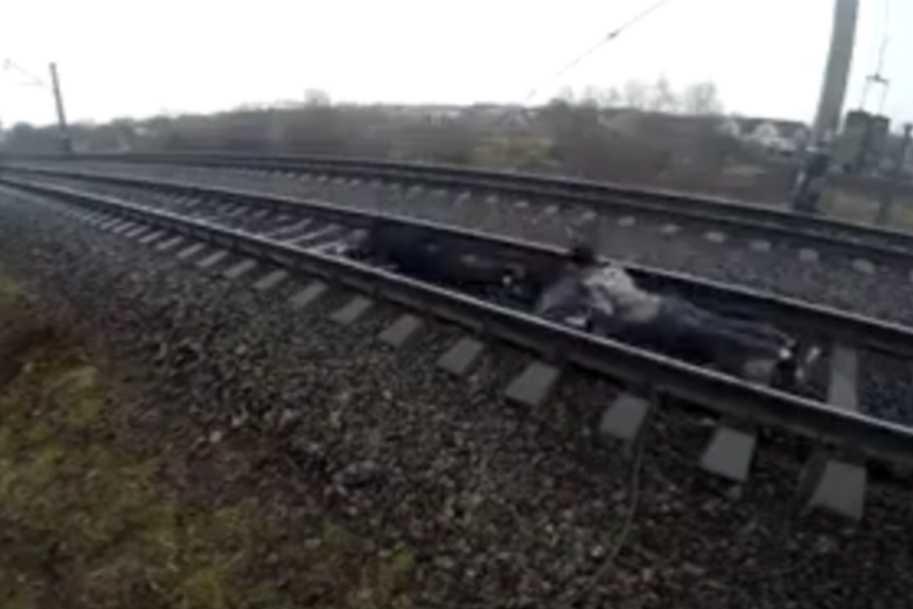 » Смертники! «:В Ровно подростки прыгнули под поезд