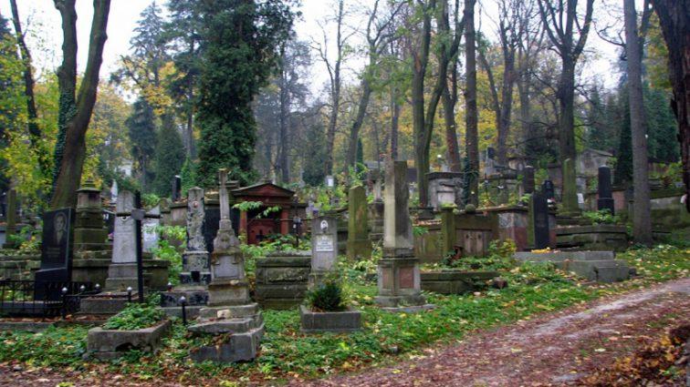 «Повалил на землю и стал бить в лицо»: В Одессе молодую девушку избили и ограбили прямо на кладбище