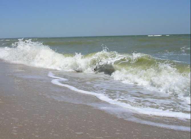 Ищут уже целую неделю: тело пропавшего без вести нашли на берегу моря