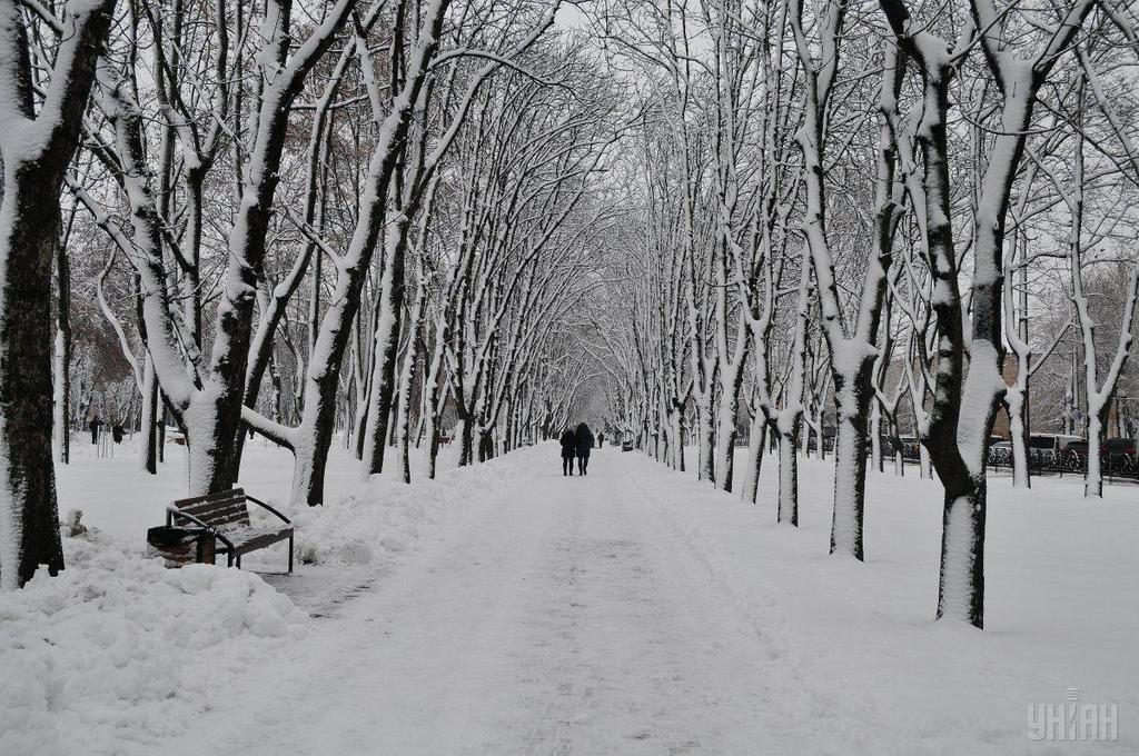 Морозы до -30? Какую погоду прогнозируют синоптики для Украины на февраль
