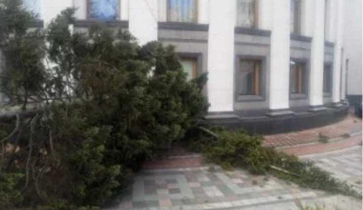 «Могла бы обезвредить кого-то»: Ужасный ураган в столице повалил огромную ель на здание ВР