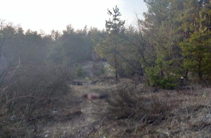 Два дня не появлялся на службе: На Харьковщине возле кладбища нашли тело убитого солдата-контрактника